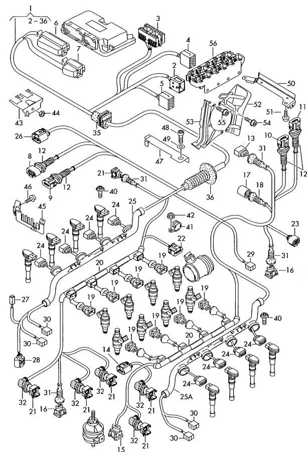 2004 Audi S8 Wiring Conduit Transmission  Remark  Motronic